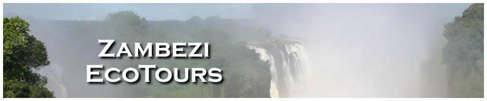 Zambezi Eco-Tours